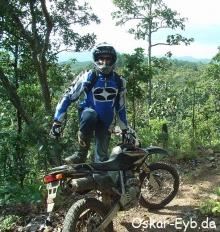 motocrosschamp.jpg